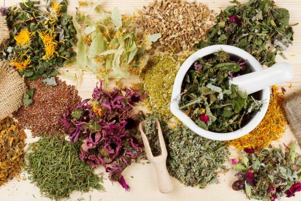 hair loss herbal